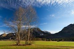 Alpi bavaresi con il castello del Neuschwanstein, Germania Immagini Stock Libere da Diritti