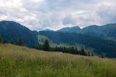 Alpi bavaresi con il Mountain View e prati nel Allgau Fotografia Stock