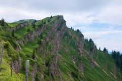 Alpi bavaresi con il Mountain View e prati nel Allgau Immagini Stock Libere da Diritti