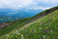 Alpi bavaresi con il Mountain View e prati nel Allgau Fotografia Stock Libera da Diritti