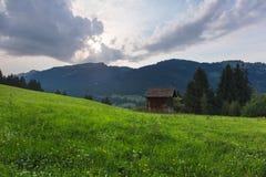 Alpi bavaresi con il Mountain View e prati nel Allgau Immagini Stock