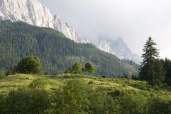 Alpi bavaresi con Zugspitze Fotografia Stock