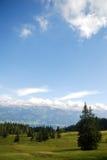 Alpi bavaresi di estate Fotografia Stock Libera da Diritti