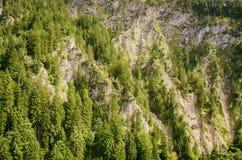Alpi bavaresi, Germania, Europa Fotografia Stock
