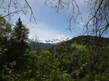 Alpi bavaresi il bello giorno di estate Fotografie Stock
