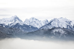 Alpi bavaresi nell'inverno Immagine Stock