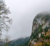 Alpi bavaresi in una nebbia, Germania Fotografie Stock