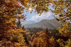 Alpi contro il tramonto, Germania della Baviera Fotografia Stock