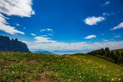 Alpi del paesaggio della montagna Immagini Stock