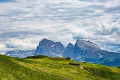 Alpi del paesaggio della montagna Fotografia Stock