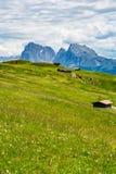Alpi del paesaggio del prato Fotografia Stock