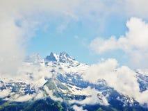 Alpi del paesaggio ricoperte neve di Mountain View Immagine Stock