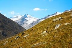 Alpi del picco di montagna del ghiacciaio Fotografia Stock