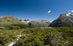 Alpi del sud Immagine Stock Libera da Diritti