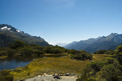 Alpi del sud Fotografia Stock