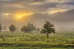 Alpi del sud alla luce di primo mattino Immagini Stock