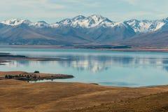 Alpi del sud che riflettono nel lago Tekapo Immagini Stock