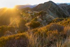 Alpi del sud di mattina Fotografia Stock