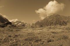 Alpi del sud, paesaggio dell'isola del sud nella seppia Fotografia Stock Libera da Diritti