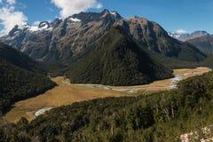 Alpi del sud vicino alla pista di Routeburn Fotografie Stock Libere da Diritti