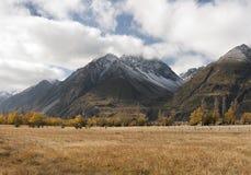 Alpi del sud vicino a Aoraki/cuoco del supporto Fotografia Stock Libera da Diritti