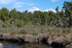 Alpi del sud. Vista dalla laguna di Gillespies Fotografia Stock Libera da Diritti