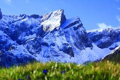 Alpi del Tirolo Immagine Stock