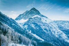 Alpi dell'austriaco dei picchi di montagna della neve di inverno Fotografia Stock Libera da Diritti