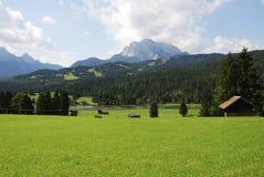 Alpi della Baviera Immagine Stock