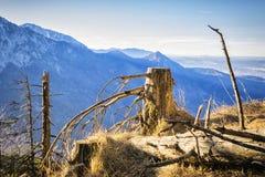 Alpi della Baviera del paesaggio Fotografia Stock Libera da Diritti