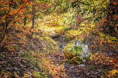 Alpi della Baviera del paesaggio Immagini Stock Libere da Diritti