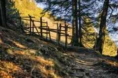 Alpi della Baviera del percorso Immagine Stock