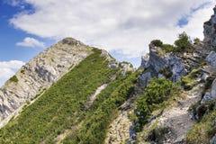 Alpi della Baviera di Aiplspitz della sommità Fotografie Stock Libere da Diritti