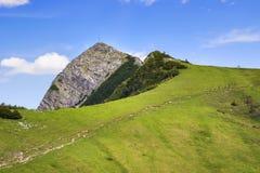 Alpi della Baviera di Aiplspitz della sommità Immagini Stock Libere da Diritti