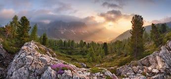 Alpi della natura di paesaggio in Italia Fotografia Stock