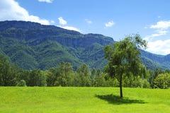 Alpi della primavera Fotografia Stock