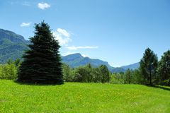 Alpi della primavera Fotografia Stock Libera da Diritti