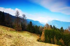 Alpi della sorgente Fotografie Stock Libere da Diritti