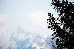 Alpi della sorgente Fotografia Stock Libera da Diritti