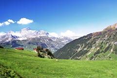 Alpi della sorgente Fotografie Stock