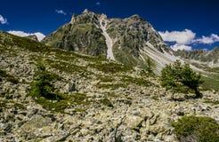 Alpi della Svizzera Fotografie Stock