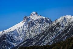 Alpi della valle di Lech Fotografia Stock