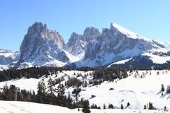 Alpi delle dolomia Fotografie Stock