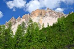 Alpi delle dolomia - Italia Immagine Stock Libera da Diritti