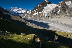 Alpi delle Wallis di estate Fotografia Stock Libera da Diritti