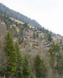 Alpi dello svizzero del paesaggio Immagine Stock Libera da Diritti