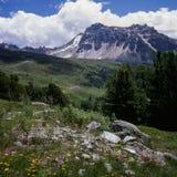 Alpi dello svizzero francese Fotografia Stock Libera da Diritti