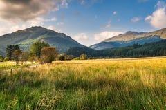 Alpi di Arrochar Fotografia Stock