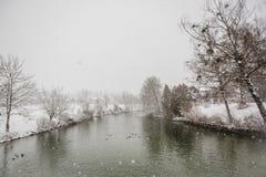Alpi di Baviera di tegernsee di inverno Fotografie Stock Libere da Diritti