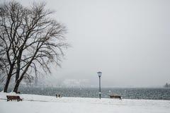 Alpi di Baviera di tegernsee di inverno Fotografie Stock